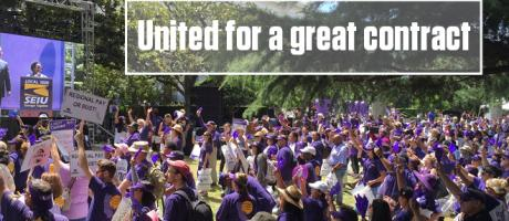 Image of We Created a Sea of Purple at the Capitol